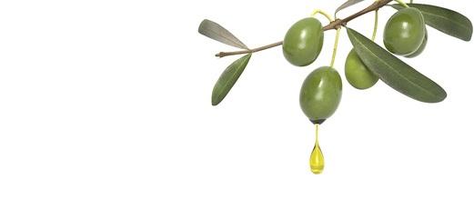 L'étude décrit le rôle clé d'une protéine plasmatique, ApoA-IV qui augmente après la digestion des aliments riches en graisses insaturées, comme l'huile d'olive et est plus active durant le sommeil, et qui prévient le risque d'événement cardiovasculaire.