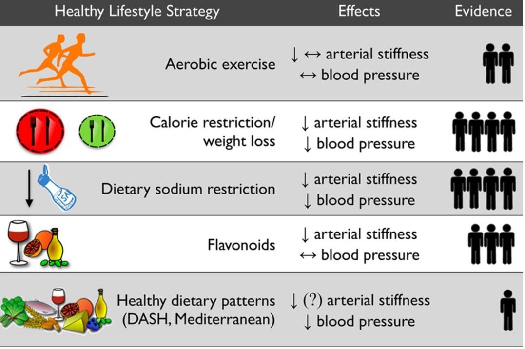 consommer des quantités plus élevées de sel entraine une pression artérielle plus élevée et peu importe l'équilibre et la diversité de l'alimentation globale du sujet.