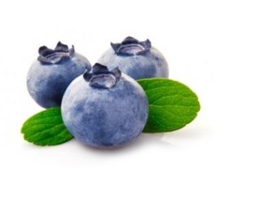 La myrtille exerce une activité antioxydante très intense en comparaison de nombreux autres fruits