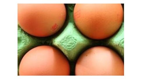 Les œufs restent l'un des aliments les plus controversés : une forte consommation d'œufs a toujours été déconseillée en raison de leur forte teneur en cholestérol.