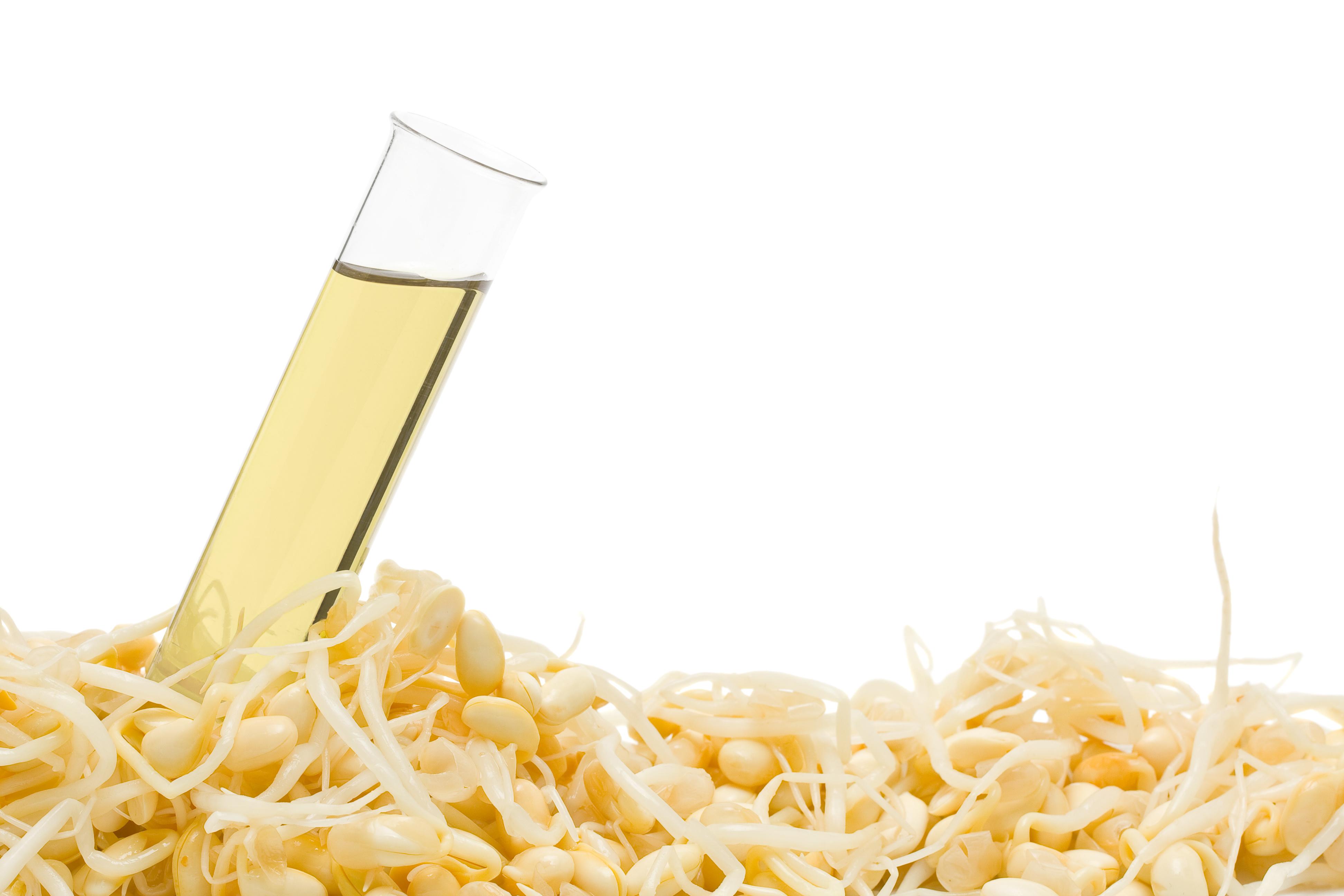 La consommation régulière d'huile de soja entraîne aussi des changements génétiques dans le cerveau et pourrait ainsi affecter le risque de troubles neurologiques comme l'autisme, la maladie d'Alzheimer, l'anxiété et la dépression.