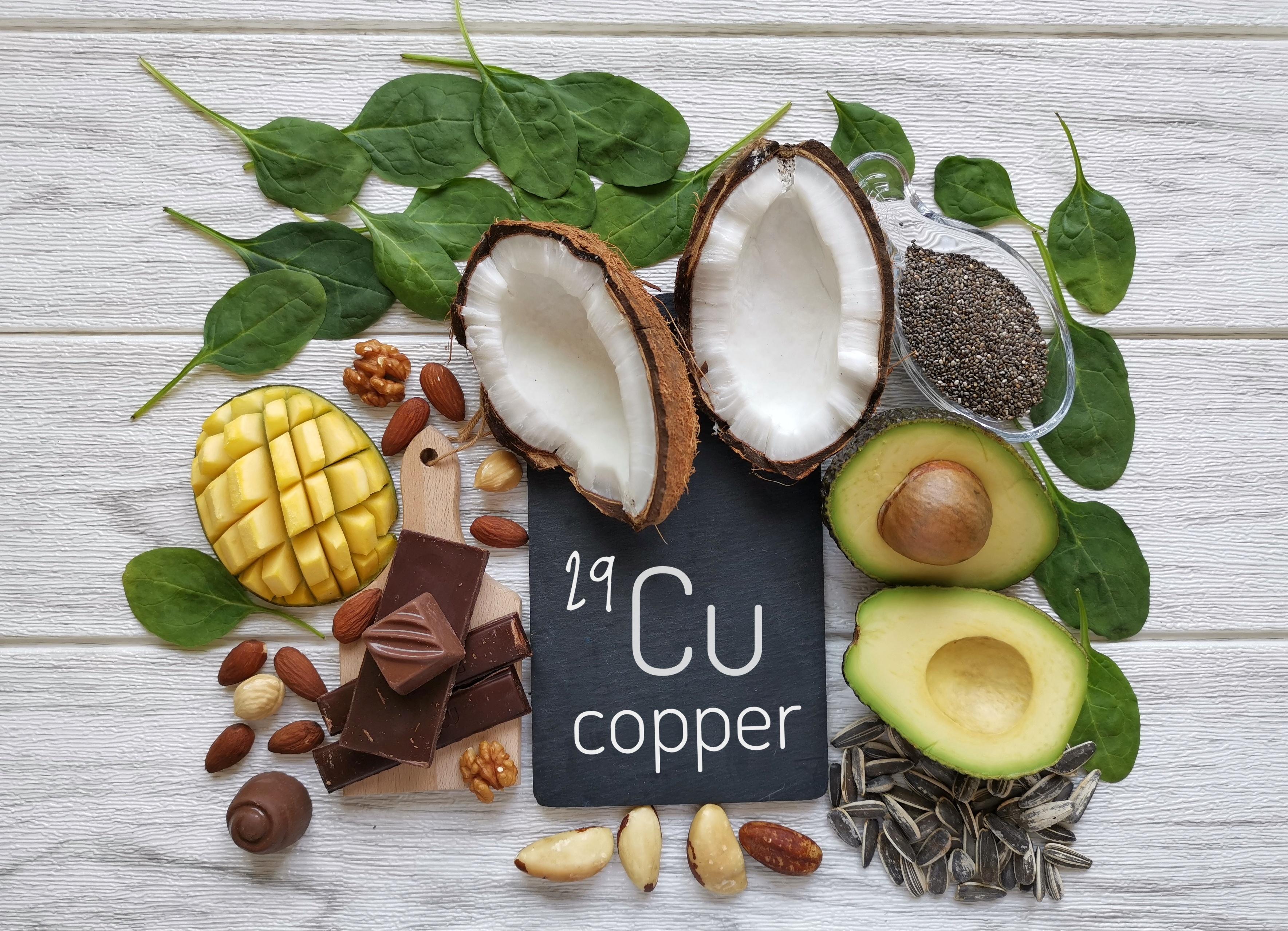 Le cuivre est un micronutriment essentiel, connu depuis longtemps pour stimuler la prolifération et la migration des cellules endothéliales - le cuivre provoque la croissance de nouveaux vaisseaux sanguins (Visuel Adobe Stock 355058222)